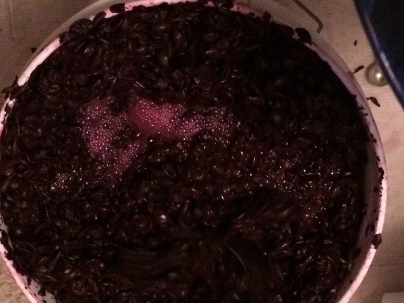 wine bubbling